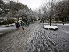 tuyết rơi Nhật Bản tháng 11