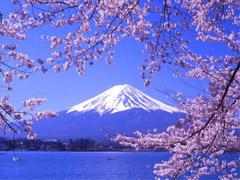 đi du học Nhật Bản JVB