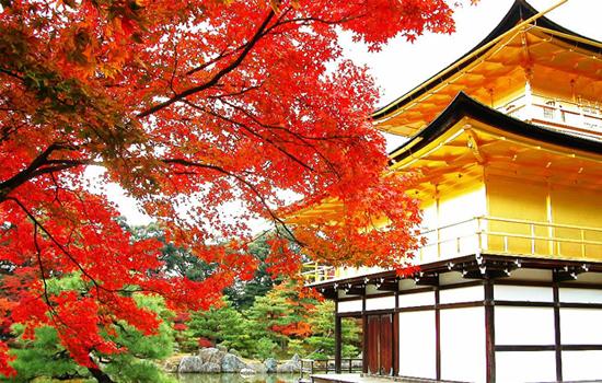 phong Nhật Bản xen lẫn sự cổ kính của cố đô Kyoto